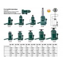 Ccric bouteille hydraulique 50T COMPAC